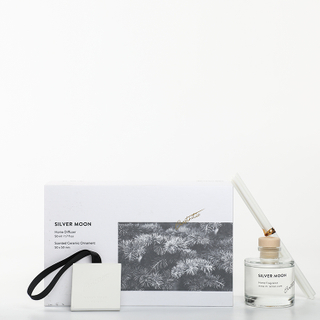 Sound of Wind Collection Sliver Moon 9.5*9.5cmH Scented Clay And 50ml Reed Diffuser Gift Set